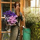lillepoed ja kauplused